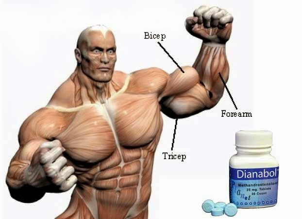 effects of Dianabol 20