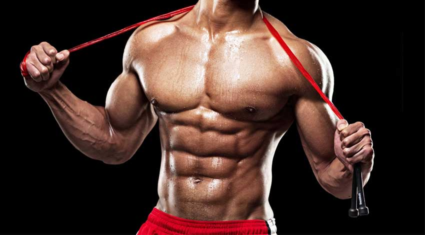 Sale of sports pharmacology and steroids for sale – HULK BODY